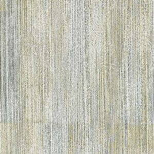 BIA 603
